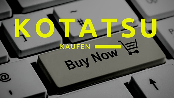 Kotatsu kaufen